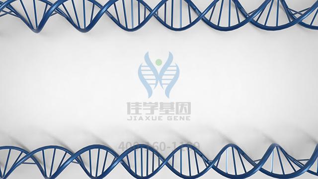 复合氨基酸打针液(18F)药物基因检测