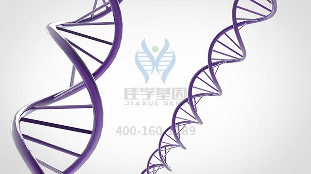 复合蛋白锌药物基因检测