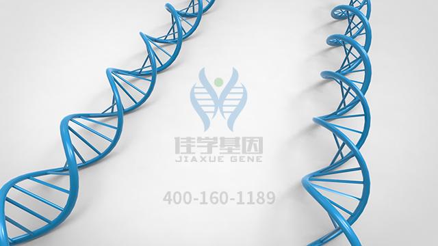 复合多酶片药物基因检测