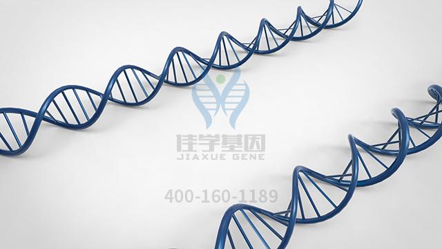 富马酸福莫特罗药物基因检测