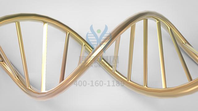 复甲二号药物基因检测
