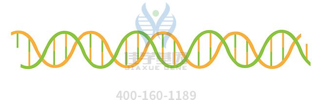 富露施药物基因检测
