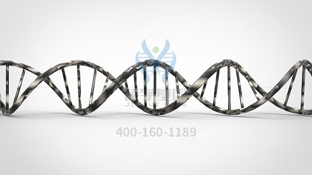 富马酸铁药物基因检测