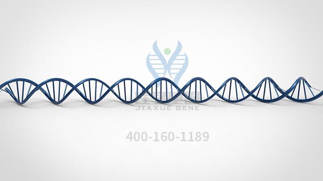 蝮蛇抗毒素药物基因检测